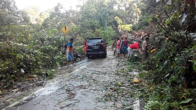LAMPUNG POST | Kerap Hujan dan Rawan Longsor, Jalinbar Pesisir Barat Lancar