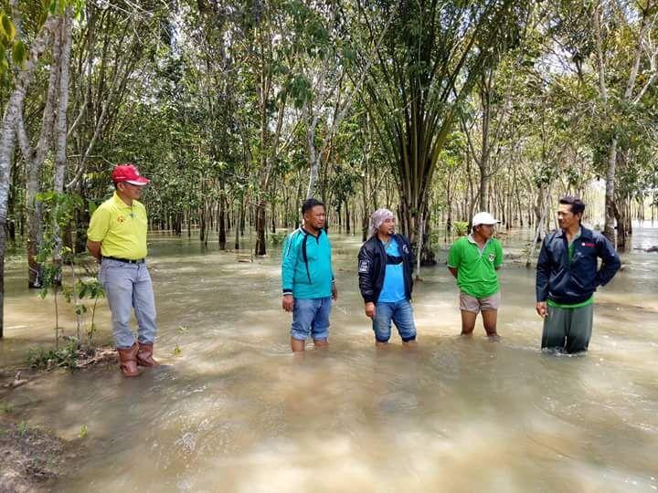 Banjir Rendam Tujuh Desa di Mesuji Timur