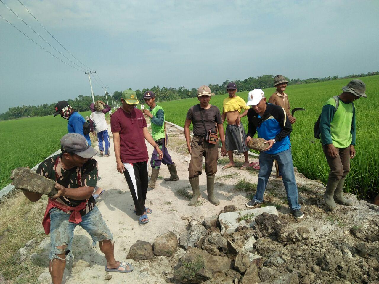 LAMPUNG POST | Camat Sragi Bersama Warga Gotong Royong Timbun Jalan
