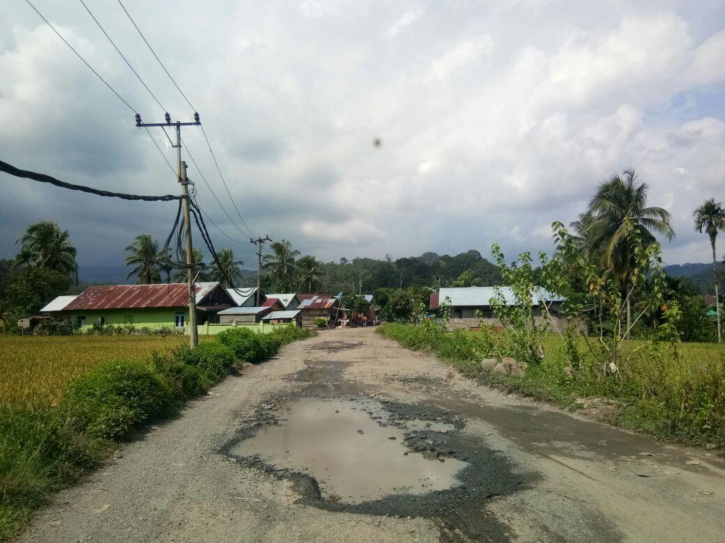 Masyarakat Minta Perbaikan Jalan Penghubung Way Krui-Karya Penggawa Dimaksimalkan