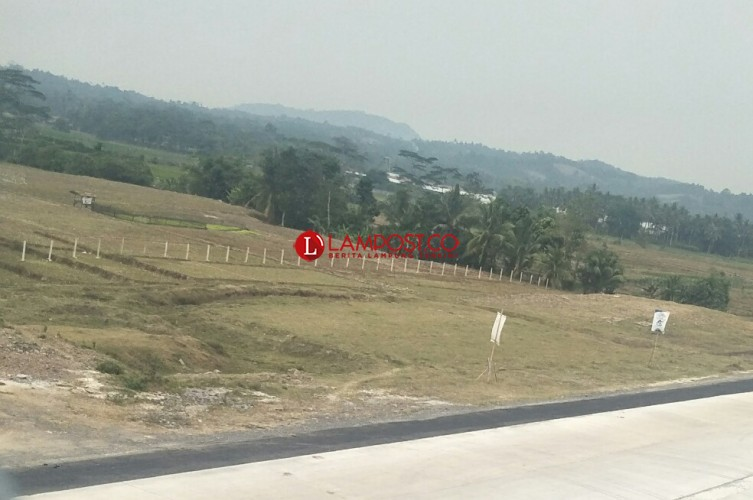 Areal Padi Kecamatan Ketapang Paling Luas Terancam Kekeringan