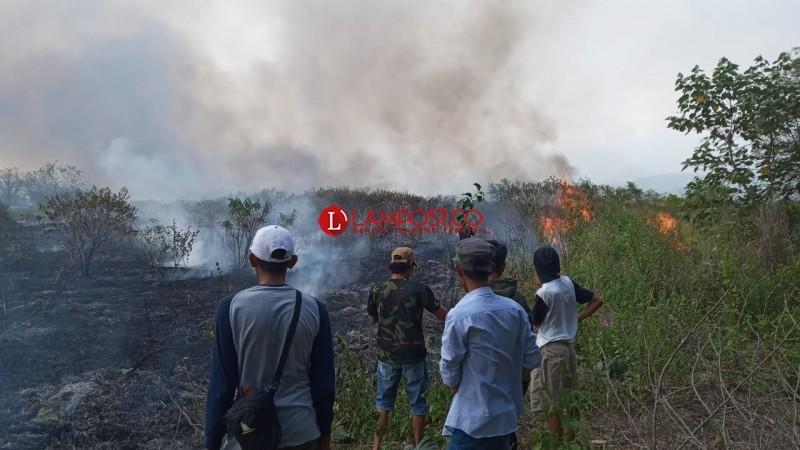 Atasi Kawasan Terbakar, TNBBS Ajak Warga Melakukan Reboisasi