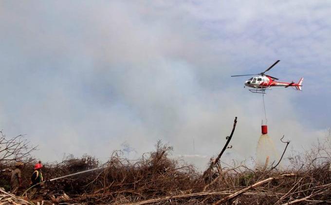 LAMPUNG POST | Ribuan Hektare Kebakaran Hutan Dipadamkan
