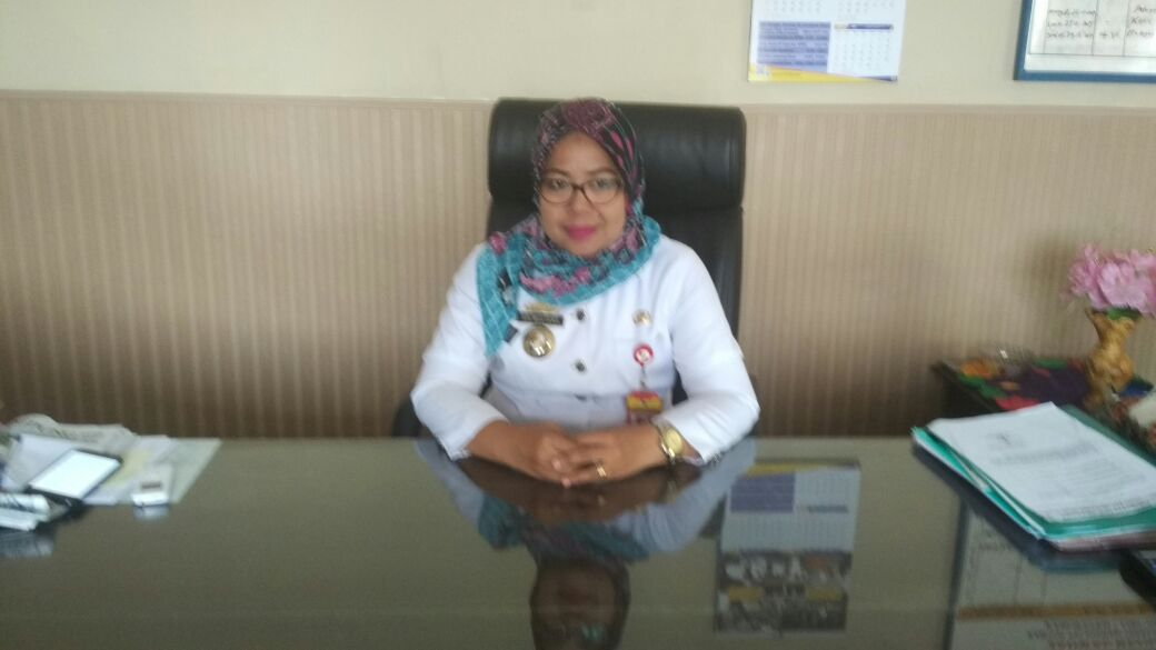 BPMSTP Lampung Utara Catat 16 Investor Selama 2017