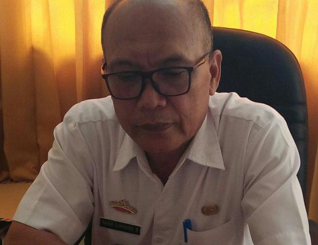 Jaga Stabilitas Harga, Dinas TPH Lambar Budidaya Cabai