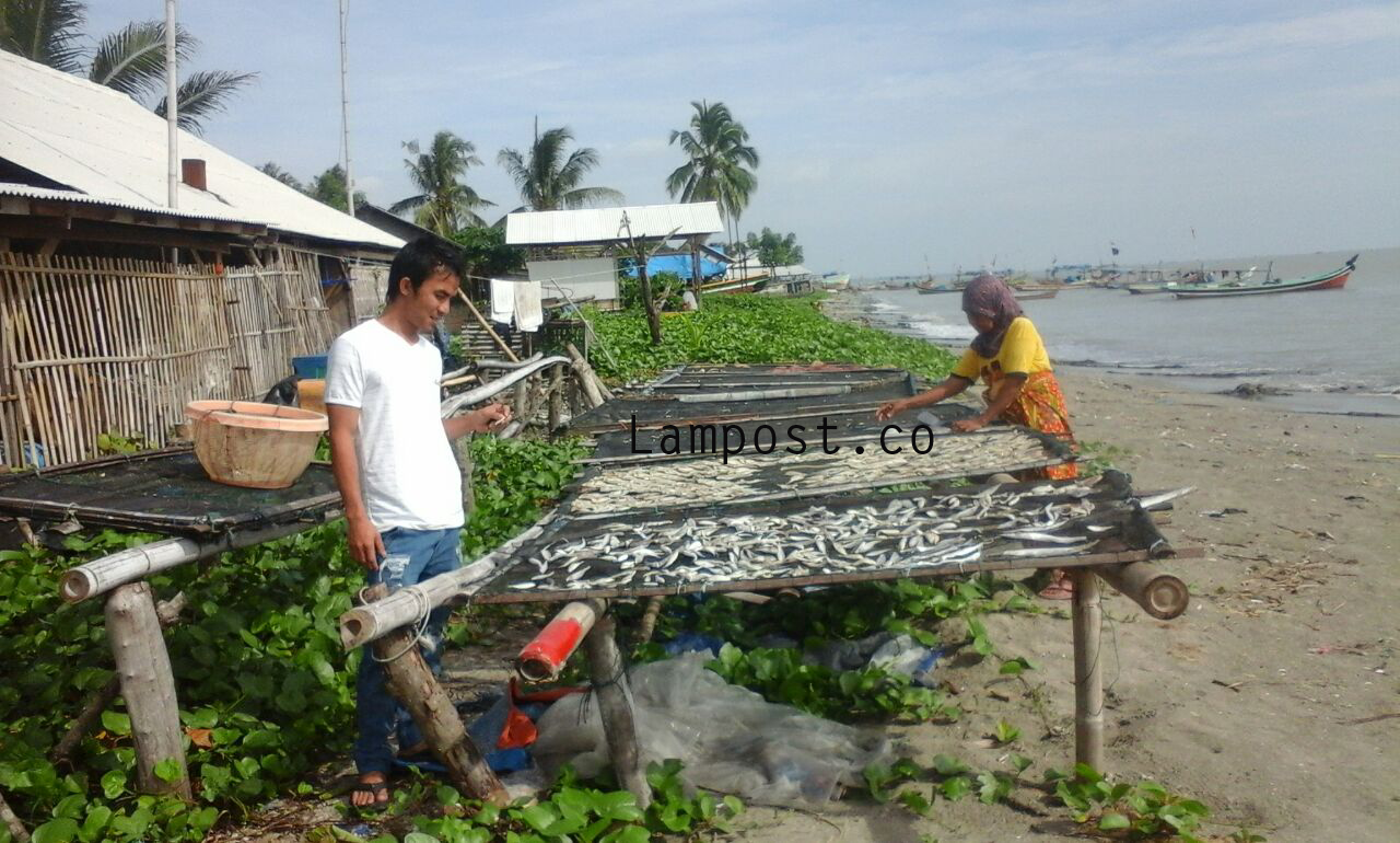 LAMPUNG POST | Bahan Baku Langka, Harga Ikan Asin di Ketapang Melejit