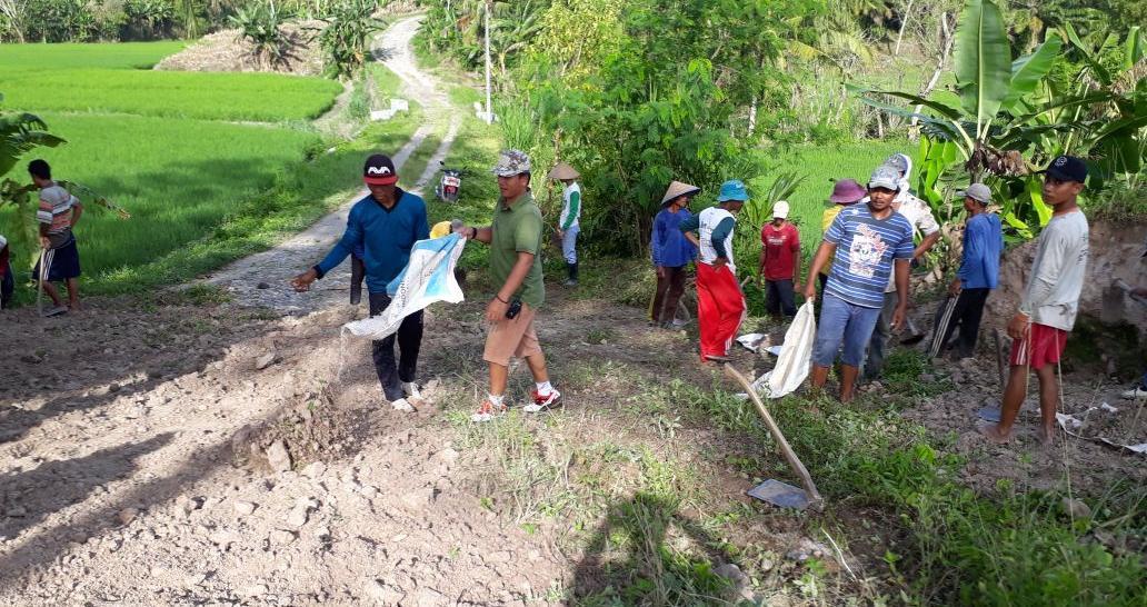 Warga Desa Sumbersari Gotong-royong Membersihkan Jalan