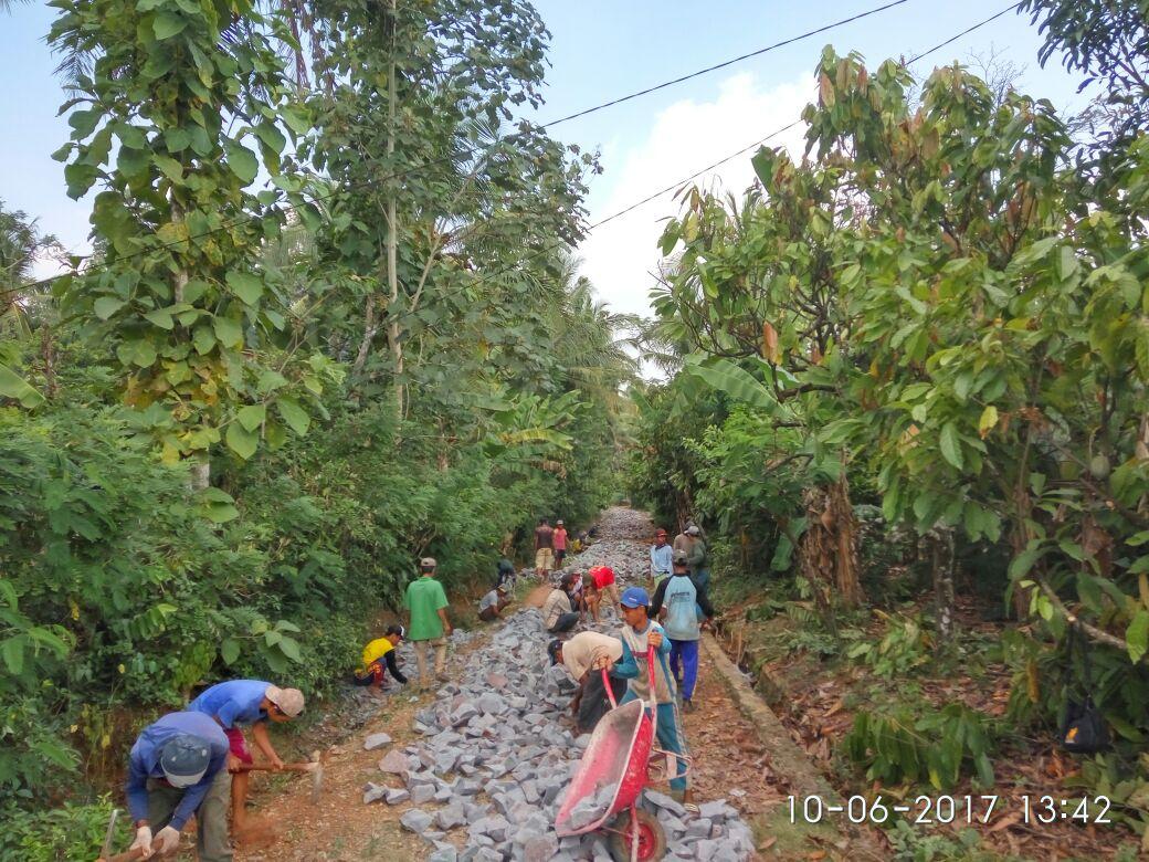 LAMPUNG POST | Dana Desa Jadi Penyemangat Pekon Sinarmulya Membangun