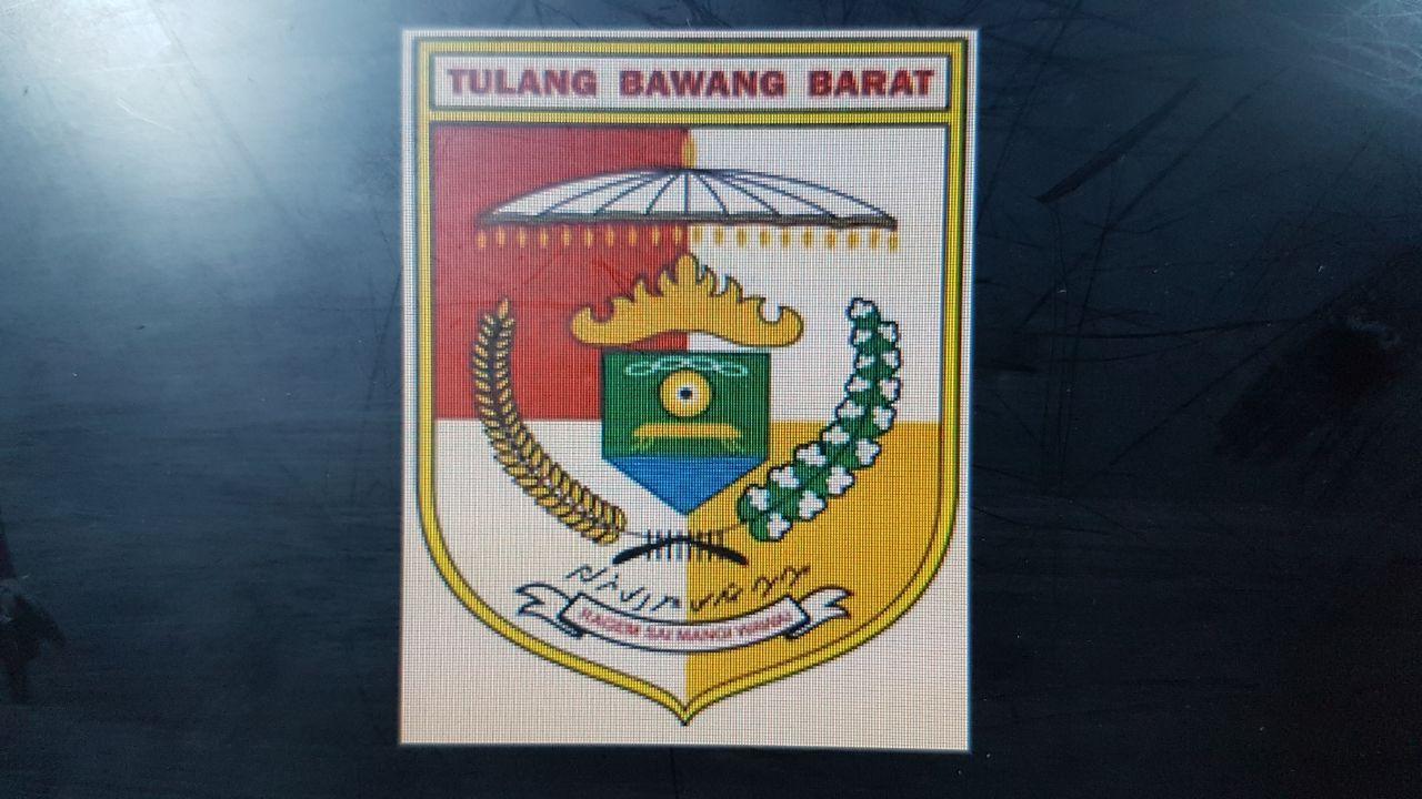 Sederet Artis Ibu Kota Bakal Meriahkan HUT Tubaba ke-9