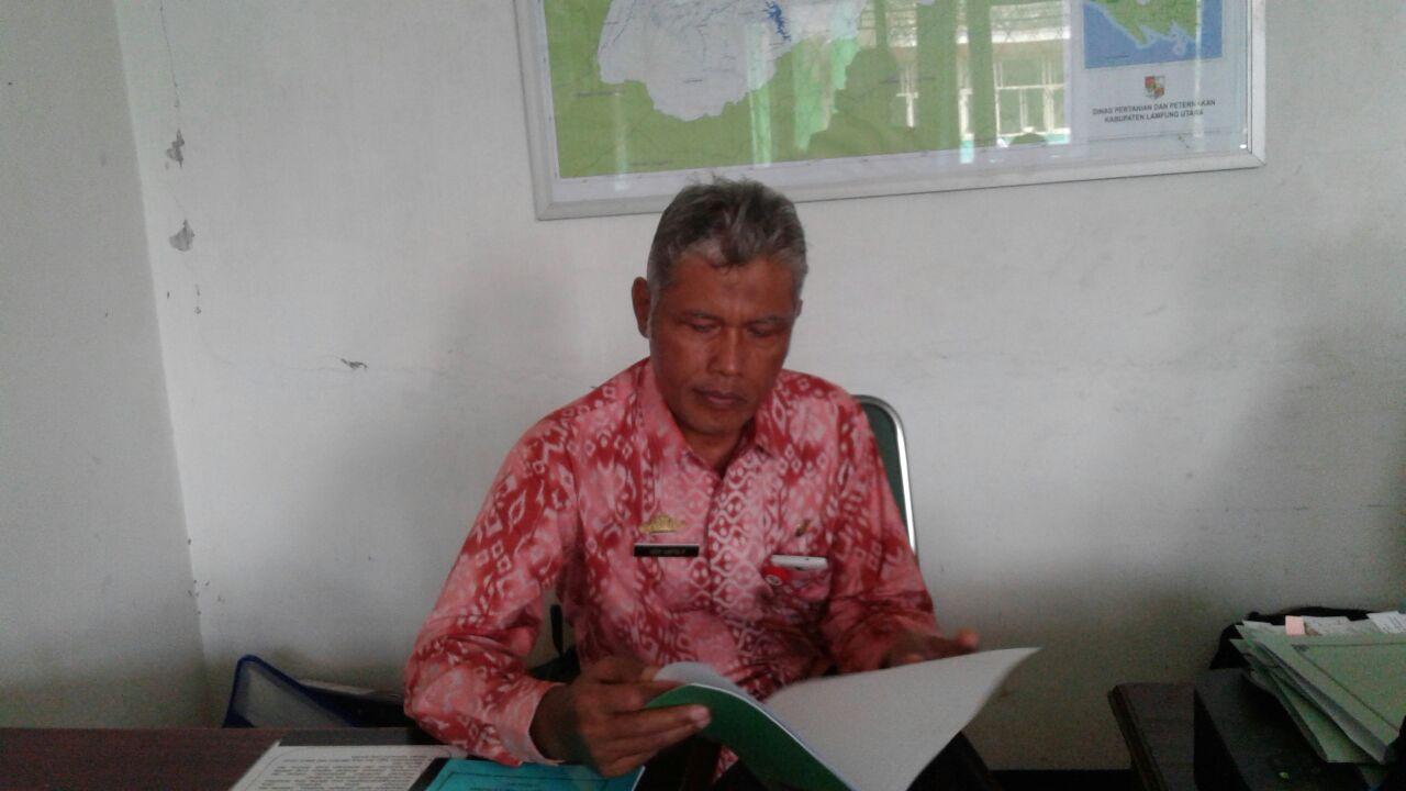 Distan Lampung Utara Bangun Lima Dam Parit di Irigasi Tersier