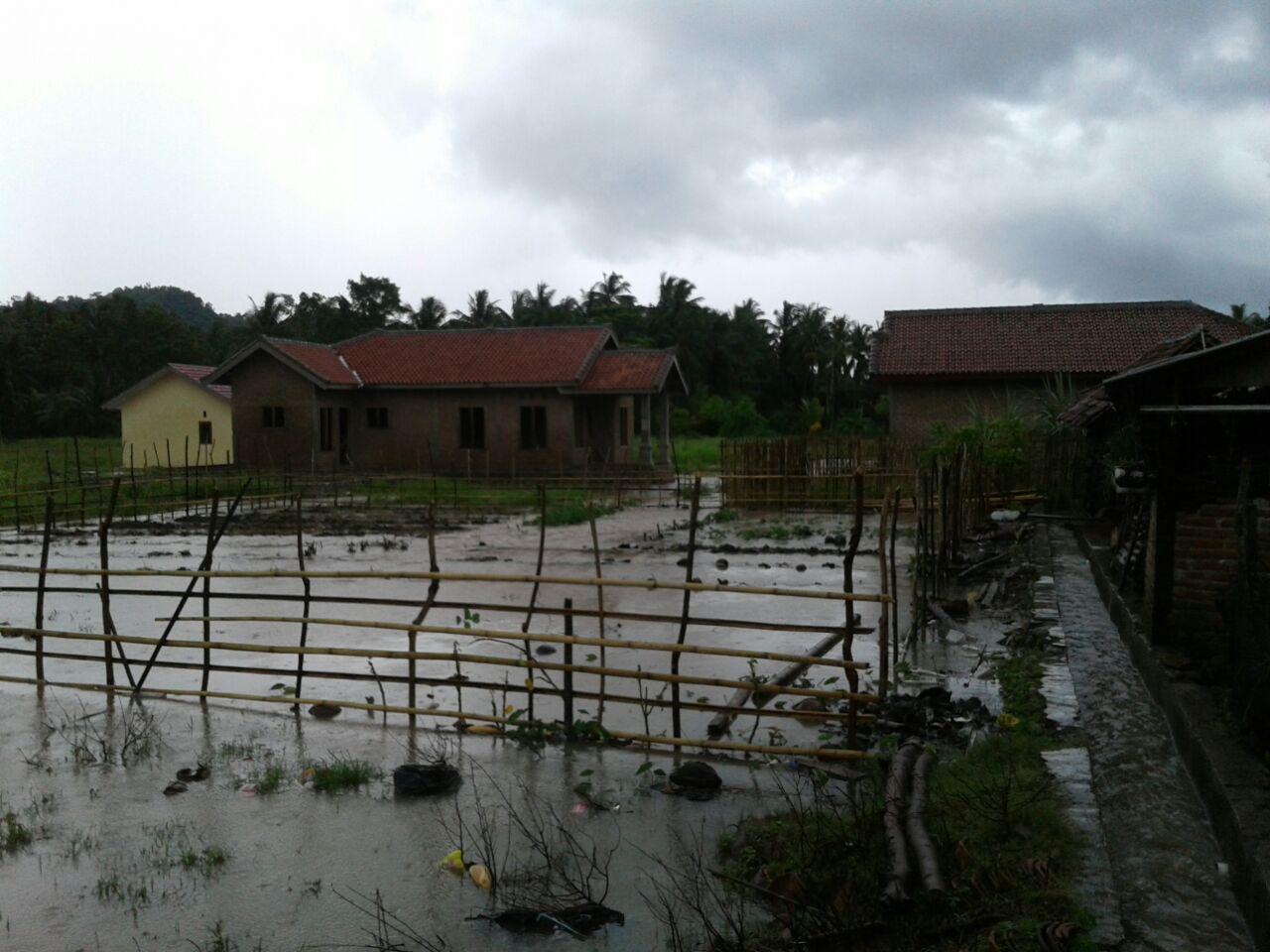 Banjir di Punduh Pidada dan Marga Punduh Rendam 158 Rumah