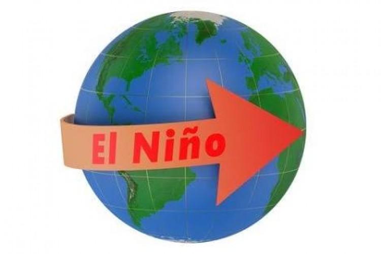 BMKG Prediksi El Nino Lemah Bertahan hingga Juni-Juli
