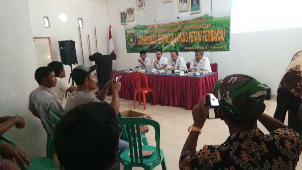 DPP Lampung Ajak Petani Tanam Tembakau