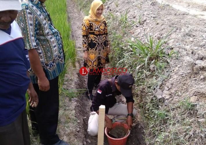 Camat Palas Monitoring Pembangunan Infrastruktur di Desa Bumidaya