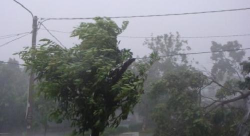 Hujan Deras dan Angin Kencang, Warga Diimbau Waspada