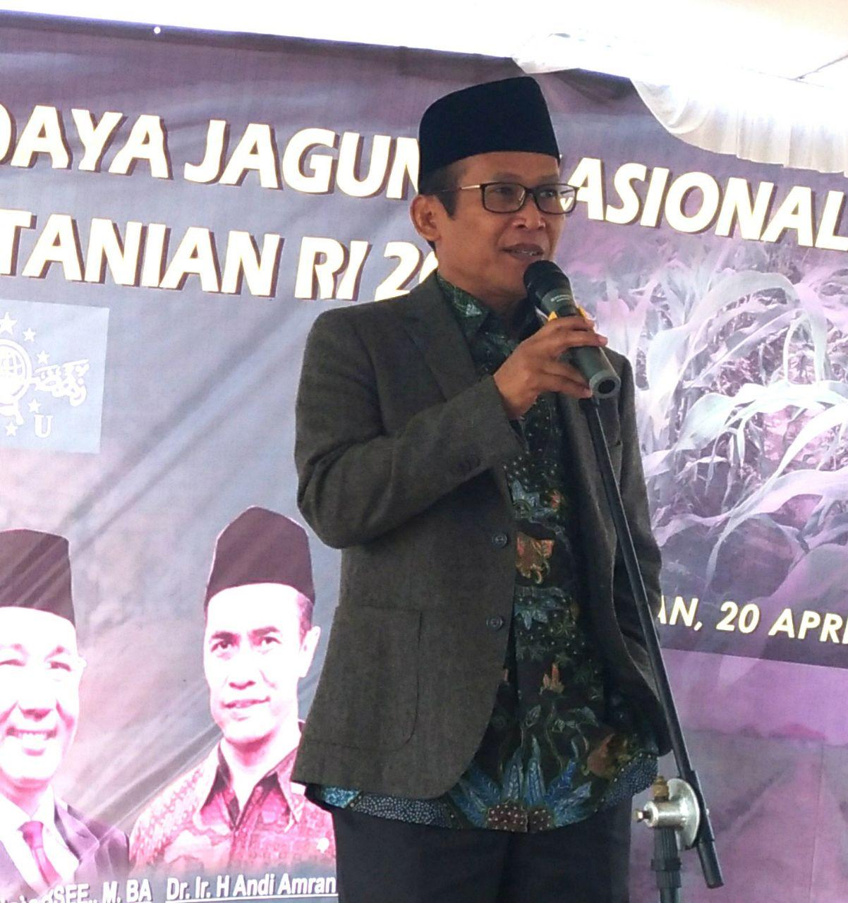 LAMPUNG POST | PWNU Lampung Dorong Produktivitas Jagung Daerah