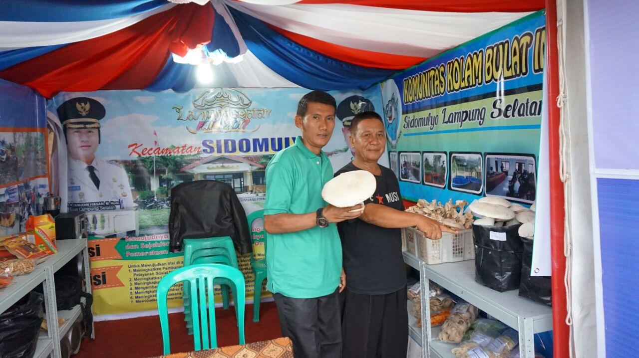 LAMPUNG POST | Budi Daya Jamur Susu Jadi Unggulan Kecamatan Sidomulyo