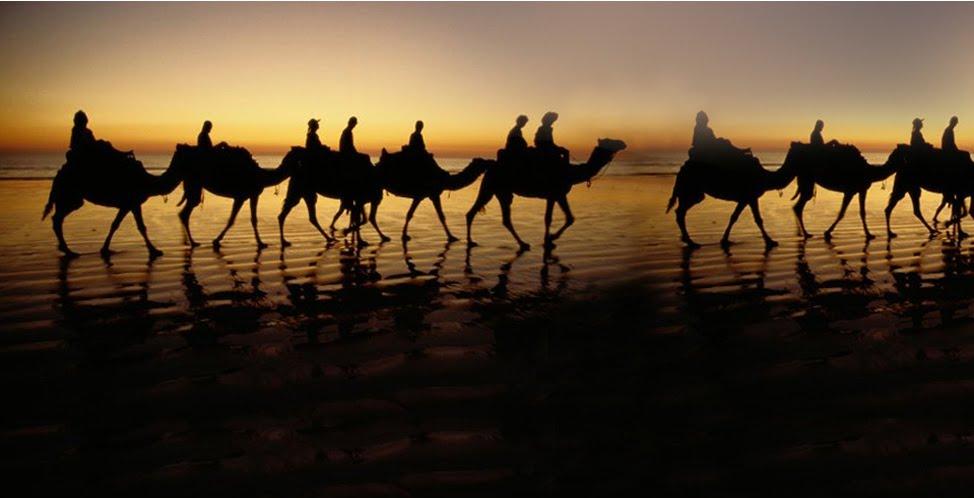 LAMPUNG POST | Mencermati Pola Migrasi Umat Islam