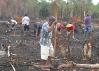 LAMPUNG POST | Nugal, Tradisi Gotong Royong Orang Lampung