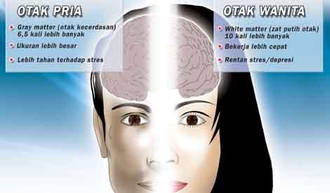 LAMPUNG POST | Aktivitas Otak Wanita