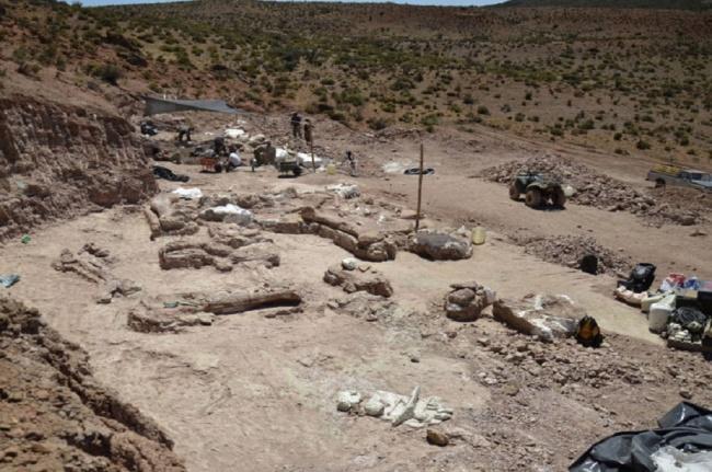LAMPUNG POST | Fosil Dinosaurus Sepanjang Tiga Bus Ditemukan di Argentina