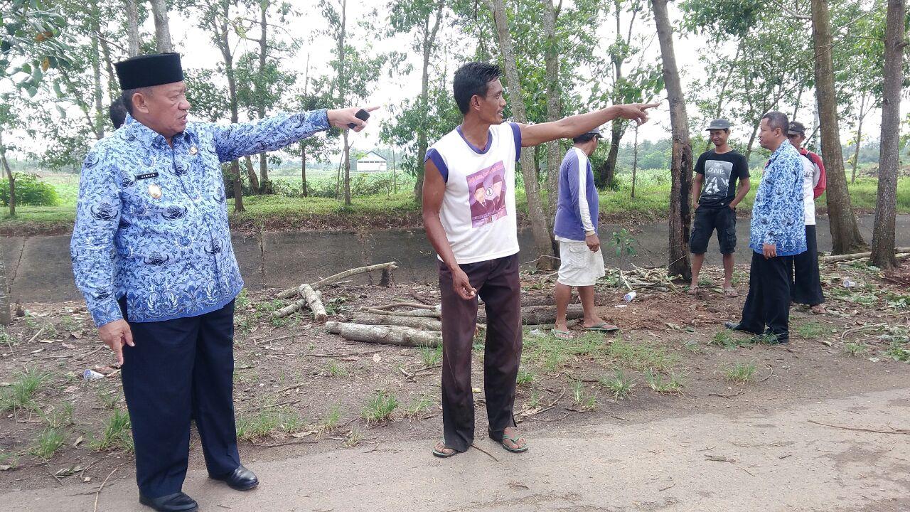 Pemkot Metro Wujudkan Taman Buah di Kelurahan Tejosari