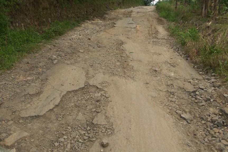 Walau Ruas Jalan Pekon Fajarbaru-Fajarbaru Rusak Parah, Pemkab Pringsewu Tak Alokasikan Dana untuk Perbaikan