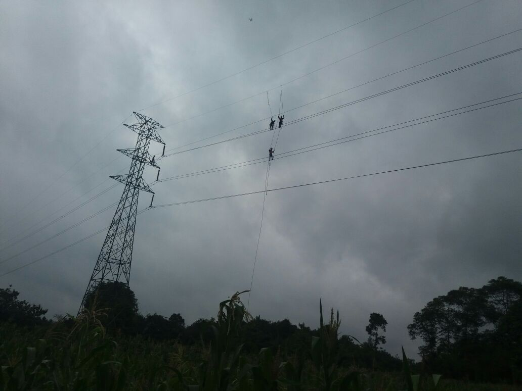 PLN Lampung Laksanakan Perbaikkan SUTT Menggala-Kotabumi