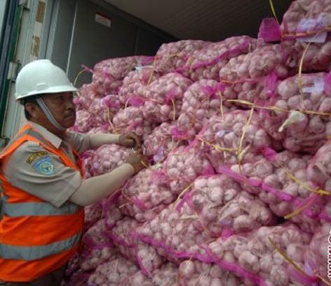 LAMPUNG POST | Pemerintah Impor 58 Ton Bawang Putih