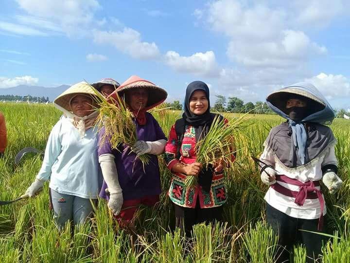 LAMPUNG POST | Penyuluh Pertanian Lamsel Raih Penghargaan Ikut Workshop ke Vietnam