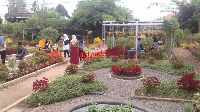 Foto Selfie di Taman Bunga Instagramable Lembur Kuring Mini Garden