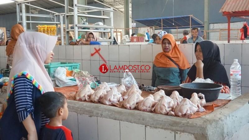 Harga Daging Ayam Potong Naik di Pasar Sidomulyo