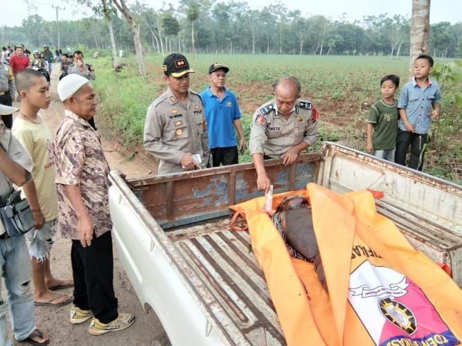 Korban Pembunuhan di Kebun Singkong Merupakan Sopir, Warga Abung Selatan