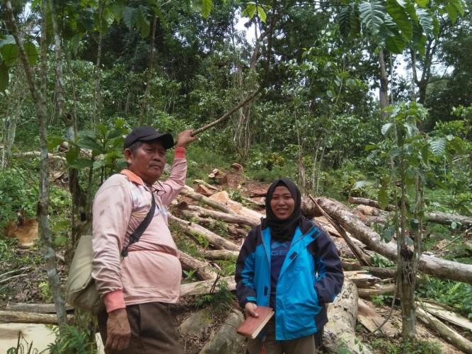 Marak Praktek Illegal Logging di Register 19, Polres Pesawaran Janji akan Beri Tindakan