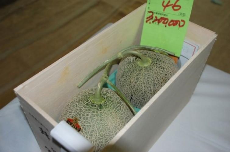 Melon Rp400 Juta