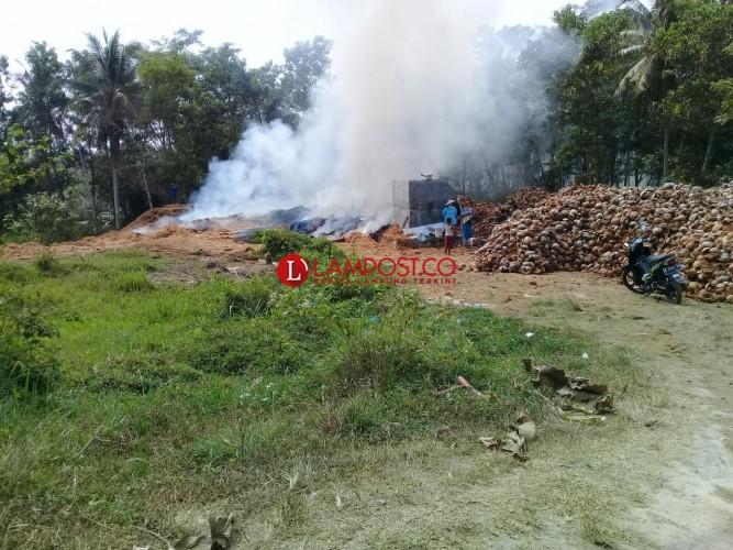 Pabrik Sabut Kelapa di Sidomulyo Terbakar