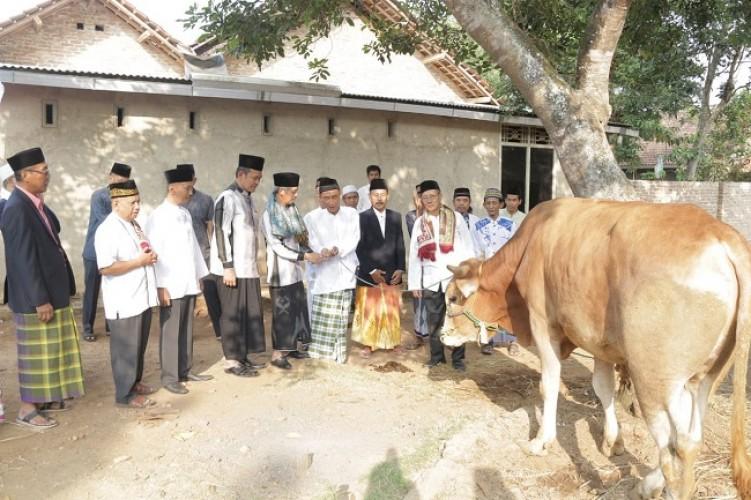 Pemkab Pringsewu Laksanakan Salat Idul Adha di Pekon Mataram