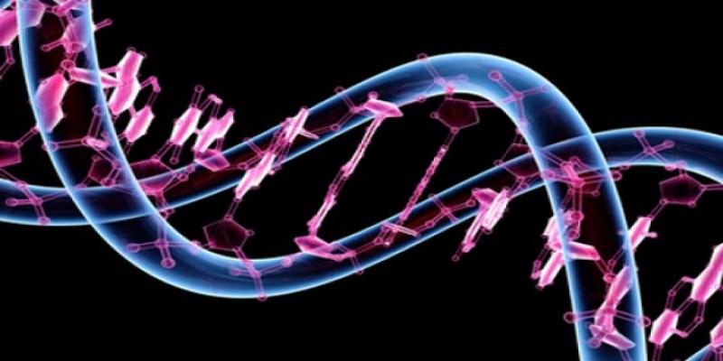 Penyuntingan Gen Rusak DNA