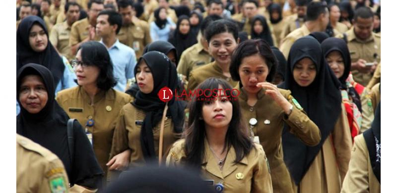 Ratusan Tenaga Honorer K II Pertanyakan Kebijakan Pemerintah Tentang Formasi dan Batasan Usia