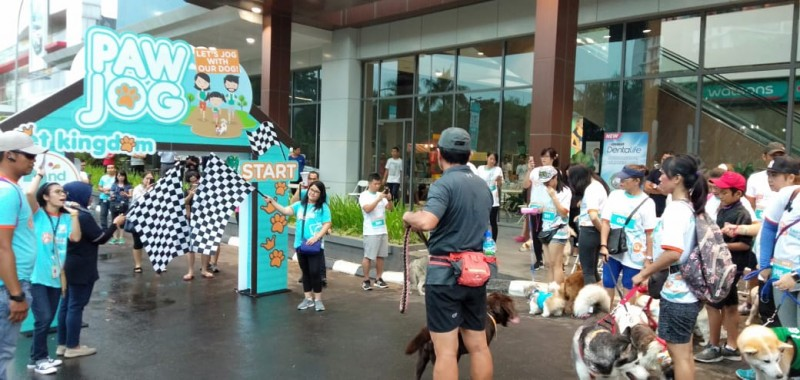Rayakan HUT Ke-2, Pet Kingdom Gelar PAW JOG