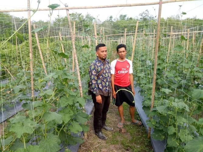Sidomulyo Berharap Jadi Desa Agro Wisata Sayuran