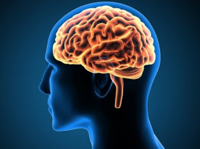 Stimulasi Otak Balikkan Hilang Ingatan